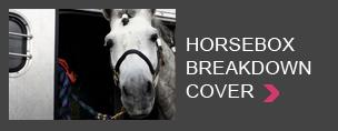 Horsebox breakdown cover